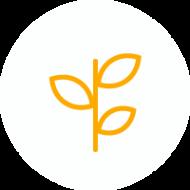 icon_capacity-building-orange_0.png